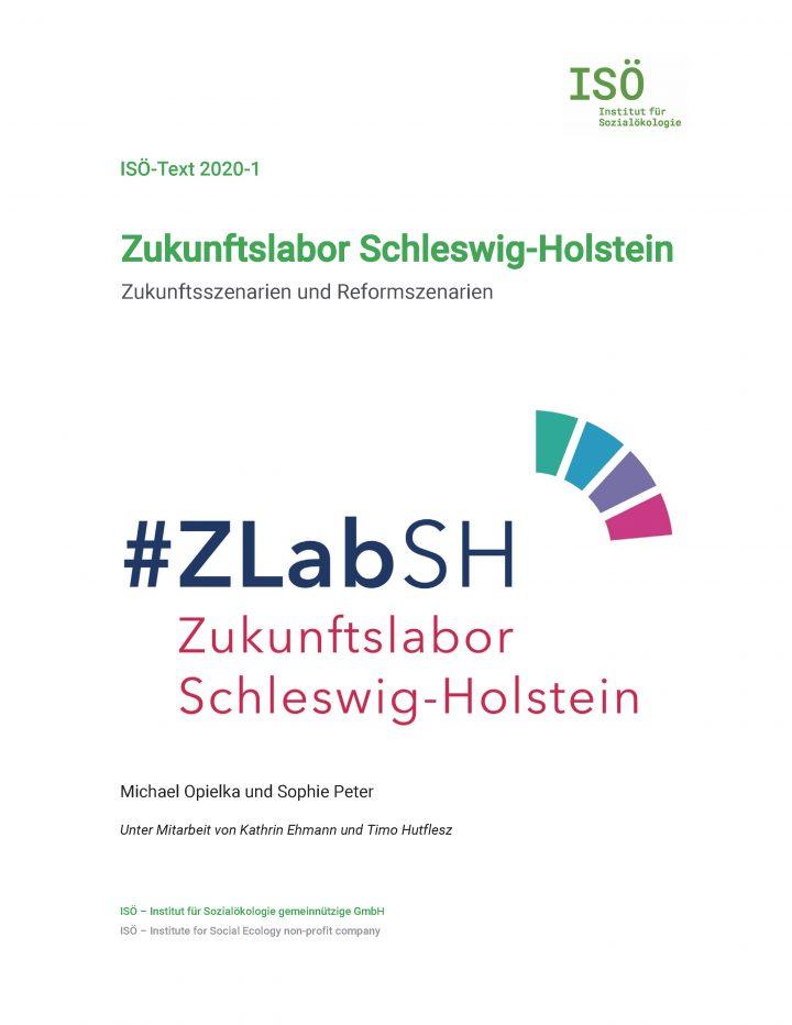 Michael Opielka/Sophie Peter, Zukunftslabor Schleswig-Holstein. Zukunftsszenarien und Reformszenarien (ISÖ-Text 2020-1)